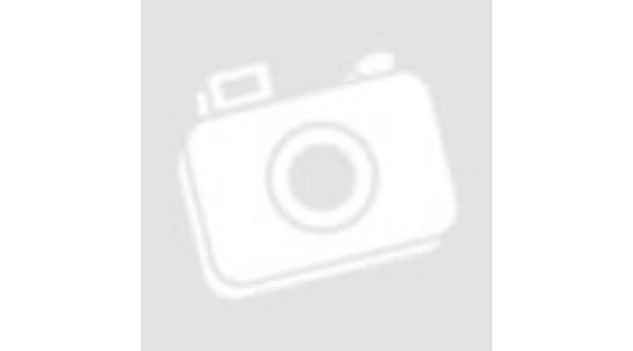 7245b66d718b AMERICAN TOURISTER Notebook hátizsák 88530-1041, LAPTOP BACKPACK 17.3